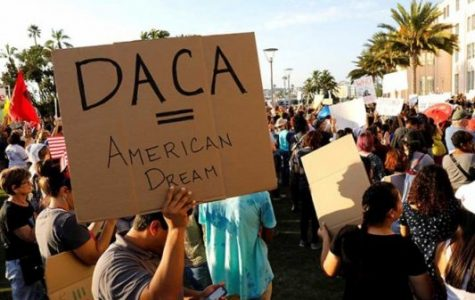 DACA and TRUMP