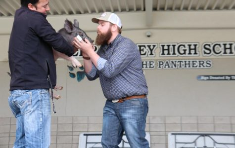 FFA's Teacher Kiss-a-Pig Fundraiser Pics