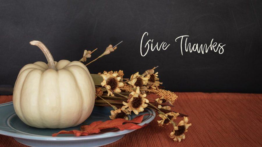 Favorite Thanksgiving Memories!