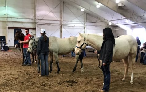 FFA Horse Judging Team Goes to Fresno