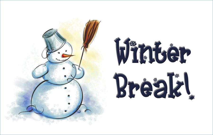 What are You Going to do on your Winter Break?