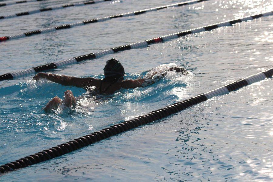 Panthers Swim!!
