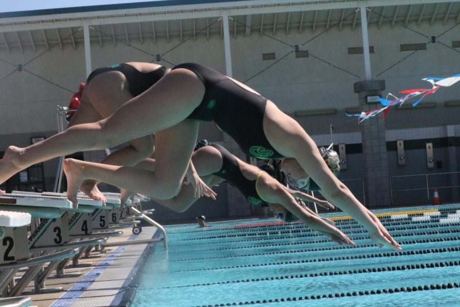 Panthers Swim to victory!