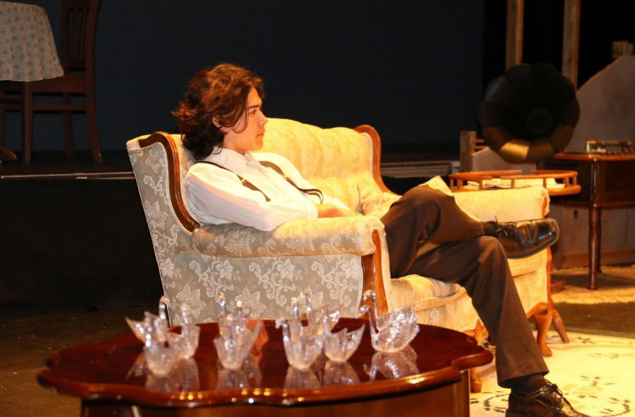 The Glass Menagerie Preview