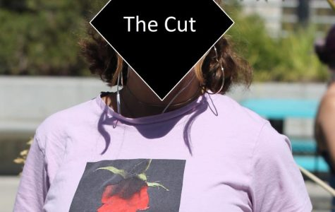 The Cut – Emotional Colors