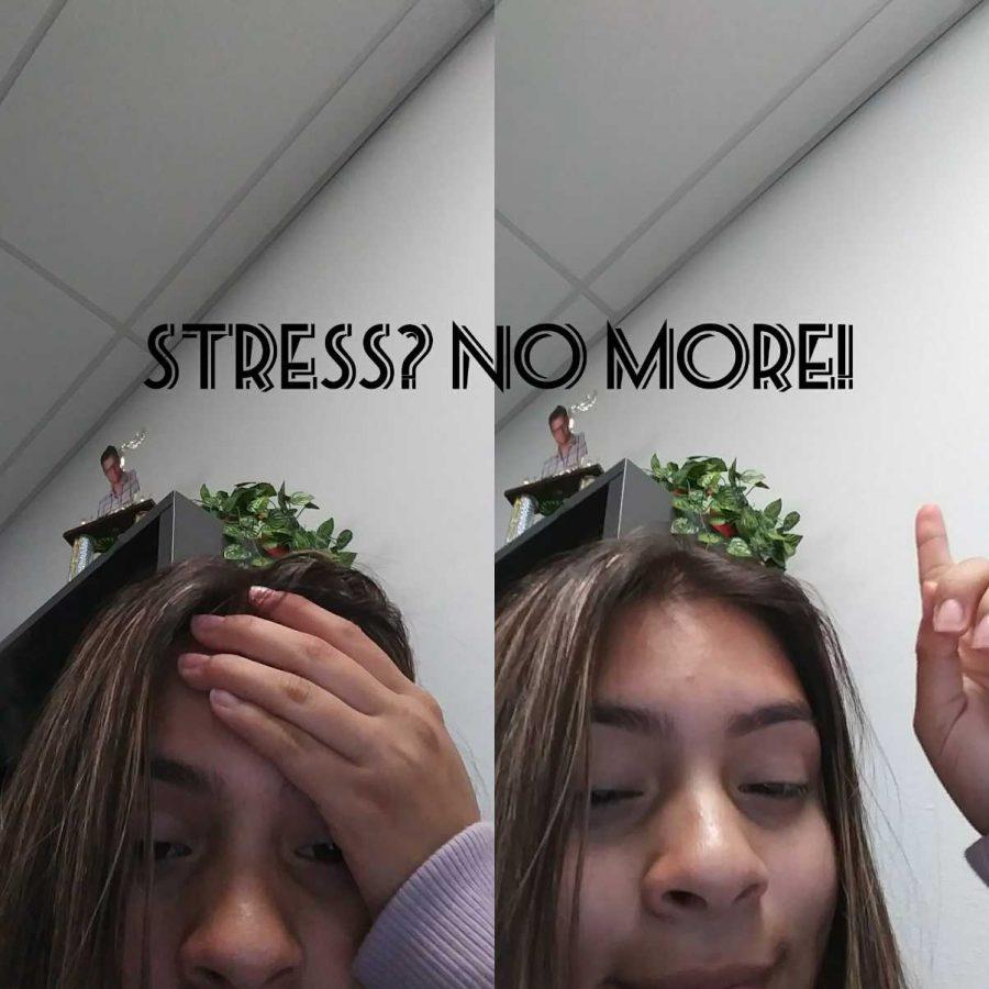 Stress...No More!